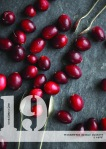 xmas NO19 cranberries