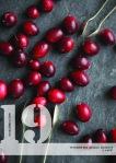 xmas NO19 cranberries